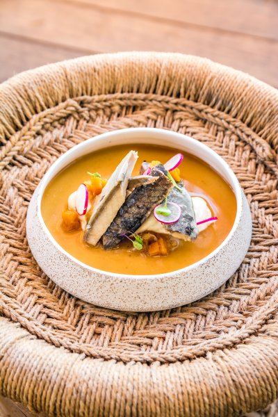 Marinated mackerel infused with hierbas ibizencas, pumpkin, radish and a light parmesan cream sauce